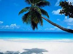 Life is a beach.jpg