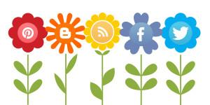 socialmedia-300x150