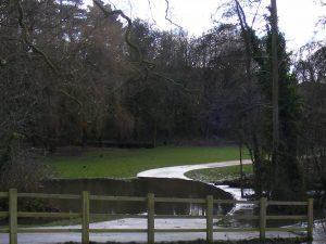 flood-300x225