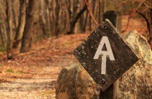 iStock-1040759356-appalachian-trail-pipeline-300x195
